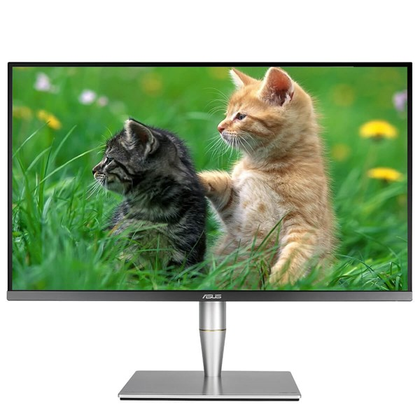 "ASUS ProArt PA32UC 32"" 4K HDR10 IPS PHOTOGRAPHER Monitor"