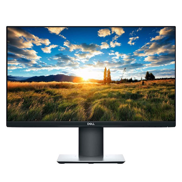 "Dell Professional P2319HE 23"" IPS Monitor"